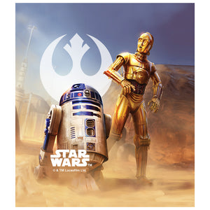 Load image into Gallery viewer, Star Wars R2-D2 and C-3PO Kids Mask Design Full View