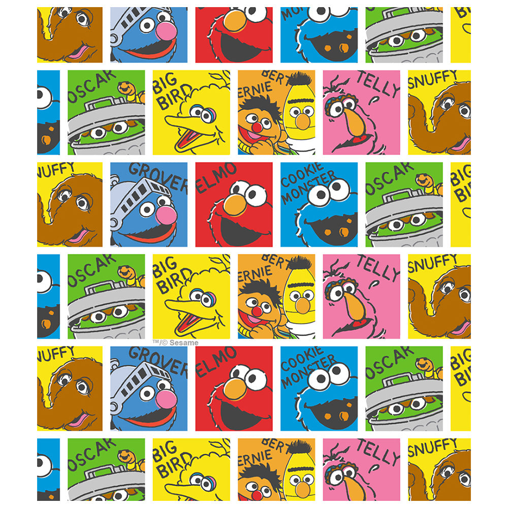 Sesame Street Named Blocks