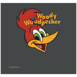 Load image into Gallery viewer, Woody Woodpecker Retro Logo Adult Mask Design Full View