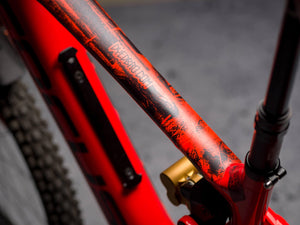 A Marcoux Photographer series Top Tube