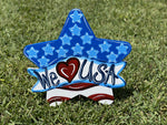 Star with USA Banner Etched Blank ready to be painted by you