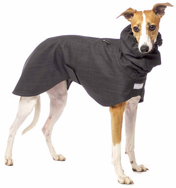 "IMPERMEABILE IN LIGHT SOFT SHELL ""SOFA DOG WEAR GABRIEL 03"" ANTRACITE PER WHIPPET, GALGO, LEVRIERO"