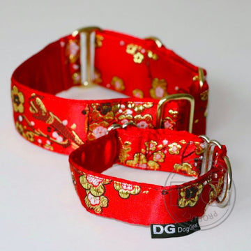 "COLLARE MARTINGALA ""DG RED AND GOLD"" PER WHIPPET E LEVRIERO"