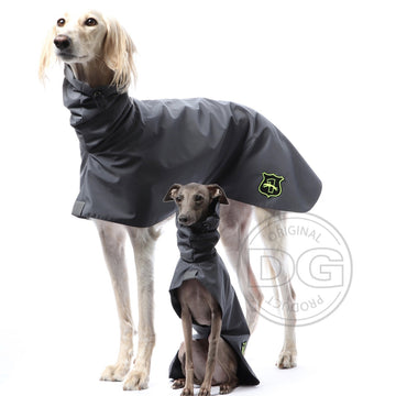 "IMPERMEABILE ""DG BASIC RAINCOAT LIGHT"" PER PLI, WHIPPET, LEVRIERO GRIGIO"