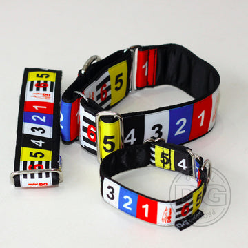 "COLLARE MARTINGALA ""DG RACING NUMBERS"" PER WHIPPET"