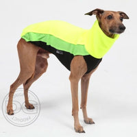 "MAGLIETTA ""DG OUTDOOR FLEECE TOP"" GIALLO FLUO PER PLI, WHIPPET, LEVRIERO"