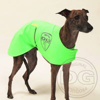"MANTELLA ""DG RACING WARM UP SAFETY"" PER WHIPPET"