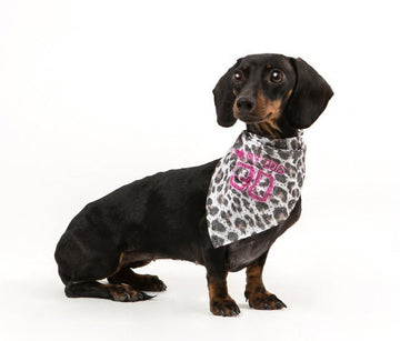 BANDANA CANE I LOVE MY DOG LEOPARD