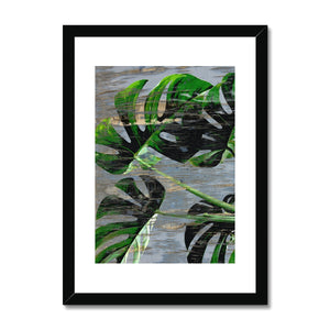 Vintage Cheese Plant Framed & Mounted Print - HusLiving
