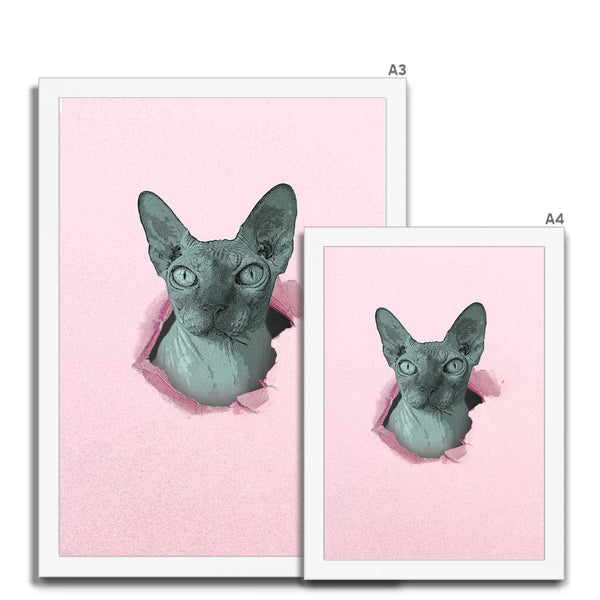 Sphynx Surprise  Framed Print - HusLiving