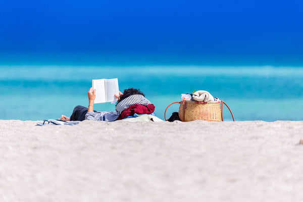 Helen Brocklebank: A Novel Holiday
