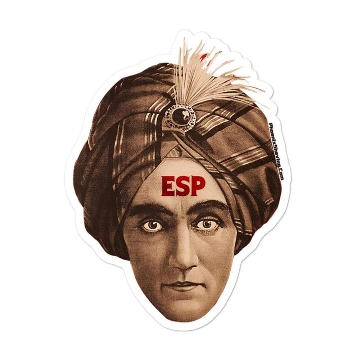 ESP BBS Vinyl Sticker | Available in 3 Sizes - Phoenix Artisan Accoutrements