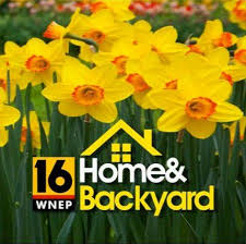 WNEP Home and Backyard | Small Business Saturday