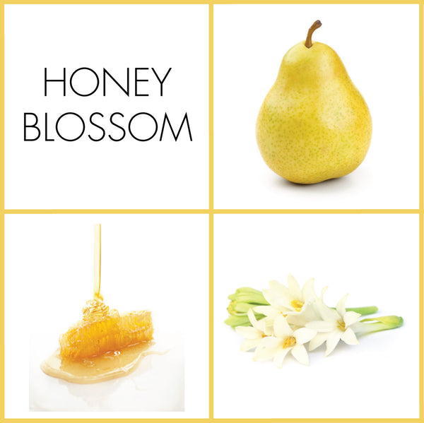 Honey Blossom Sample | Noteology