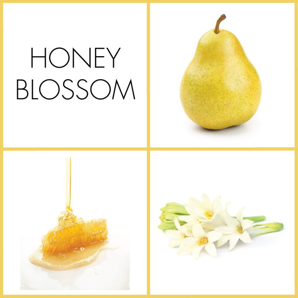 Honey Blossom Fragrance | NOTE Fragrances