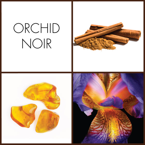 Orchid Noir Sample | Noteology