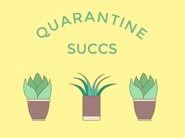 Quarantine Succs-- Label