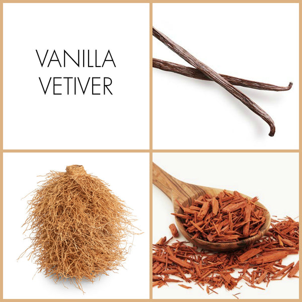 Vanilla Vetiver Eau de Parfum | Noteology