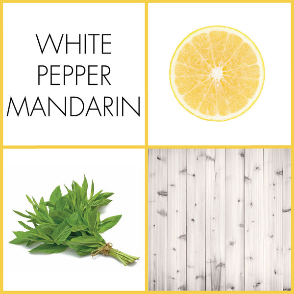 White Pepper Mandarin Fragrance | NOTE Fragrances