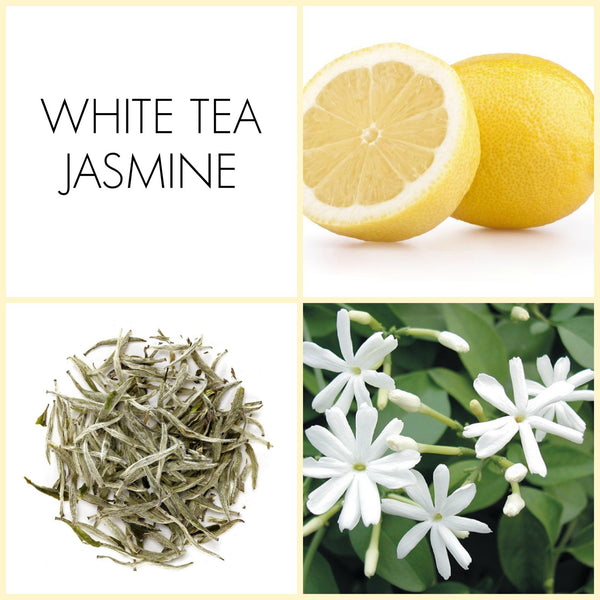 White Tea Jasmine 2 ML Fragrance Sample | Noteology