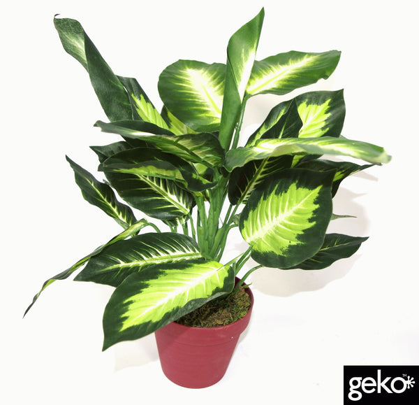 Artificial Medium 40cm Dieffenbachia Dark Plant