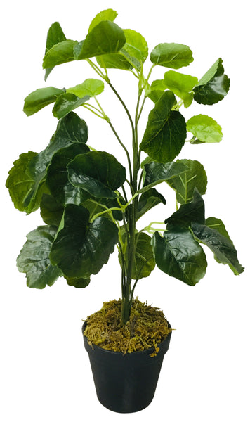 Artificial Money Bag Plant 51cm