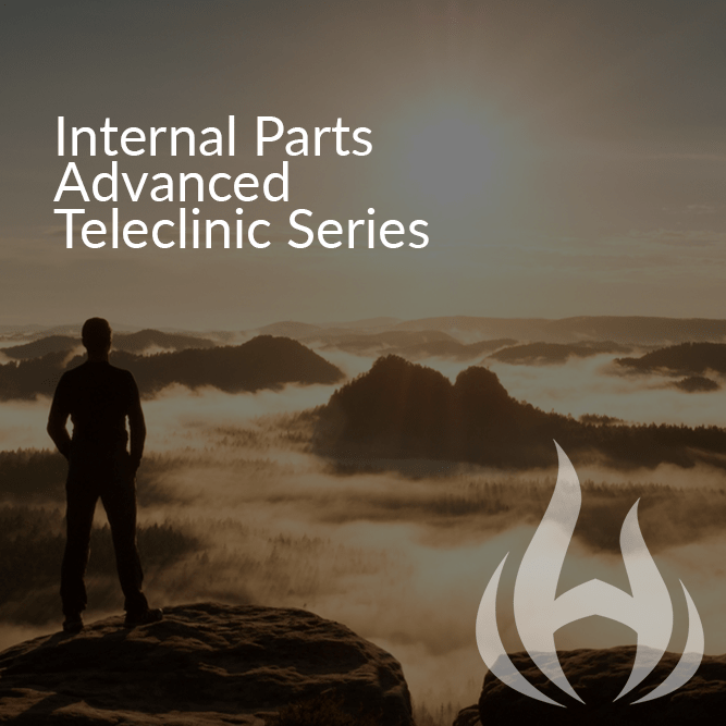 Internal Parts Advanced Teleclinic Series