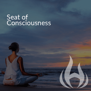 Seat of Consciousness