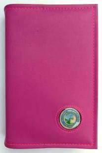 BC04 - Big Book - Pink - Hard Cover W/Coin