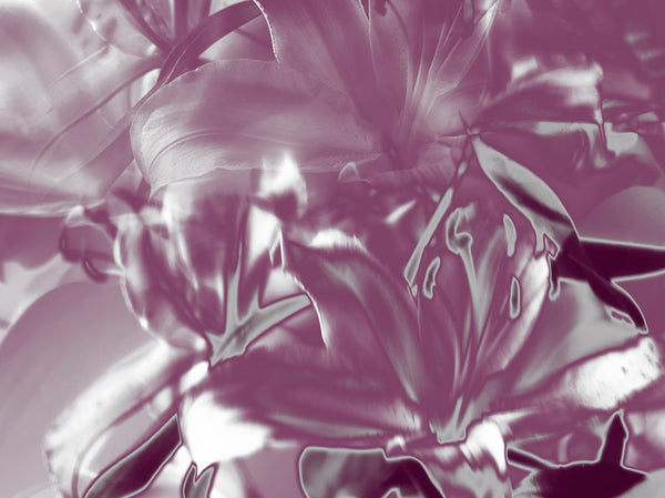 "Indira Cesarine ""Pink and Silver Lilies"""