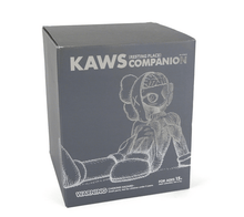 Load image into Gallery viewer, Kaws Resting Place Companion Grey