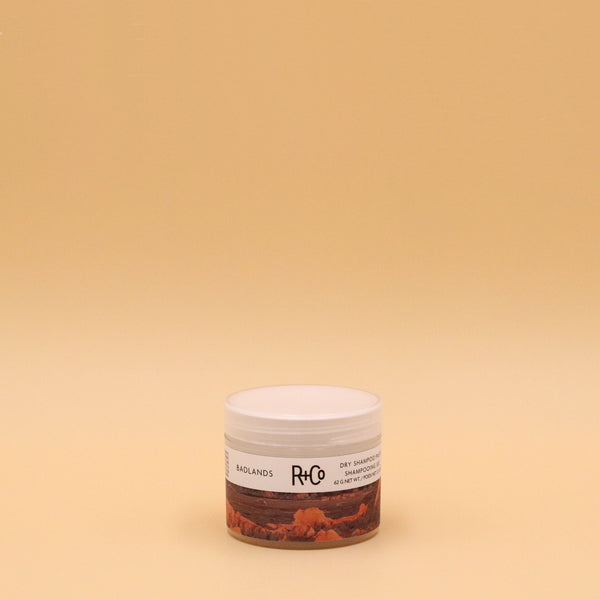 Badlands Dry Shampoo Paste | R+Co