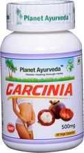 Load image into Gallery viewer, GARCINIA PLANET AYURVEDA 500mg 60 capsules