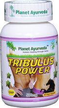 Load image into Gallery viewer, TRIBULUS POWER PLANET AYURVEDA 500mg 60 capsules