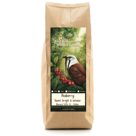 Cafe Monteverde Peaberry Microlot