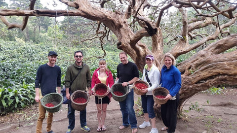Monteverde Coffee Farm Tour
