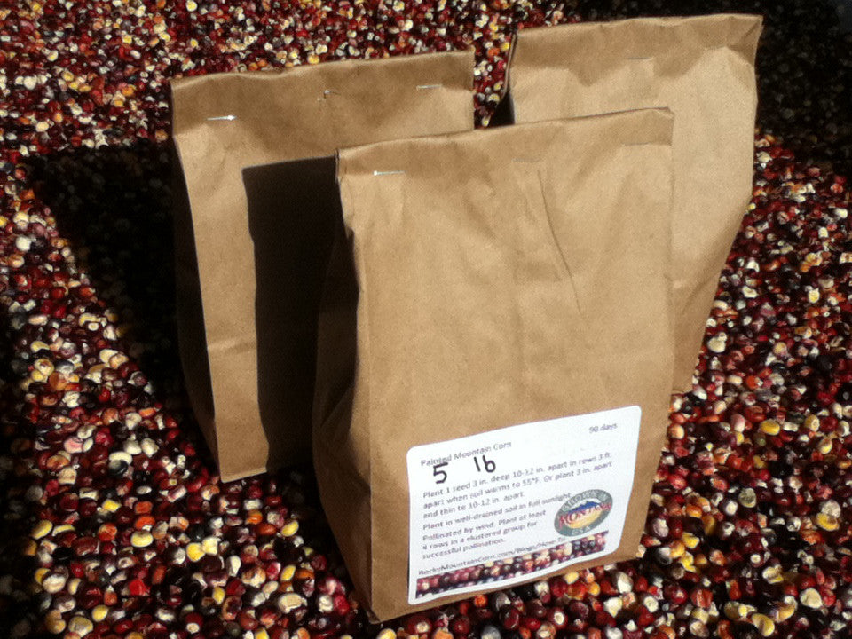 Buy 5 lbs Painted Mountain Corn seed from the Rocky Mountain Corn family - premium hand-cultivated seed - non-GMO, heirloom, organic, open pollinated, GMO-free