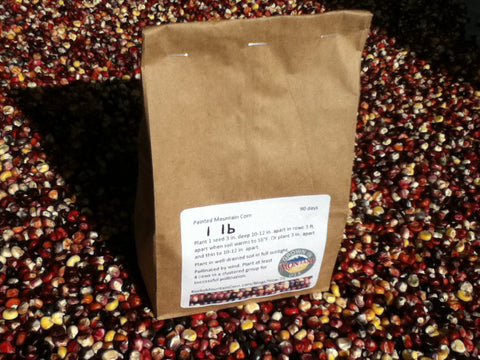 1 lb Alpine Varietal of Painted Mountain Corn Seed