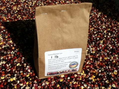1 lb Alpine Varietal of Painted Mountain Corn Seed with Shipping to Spain