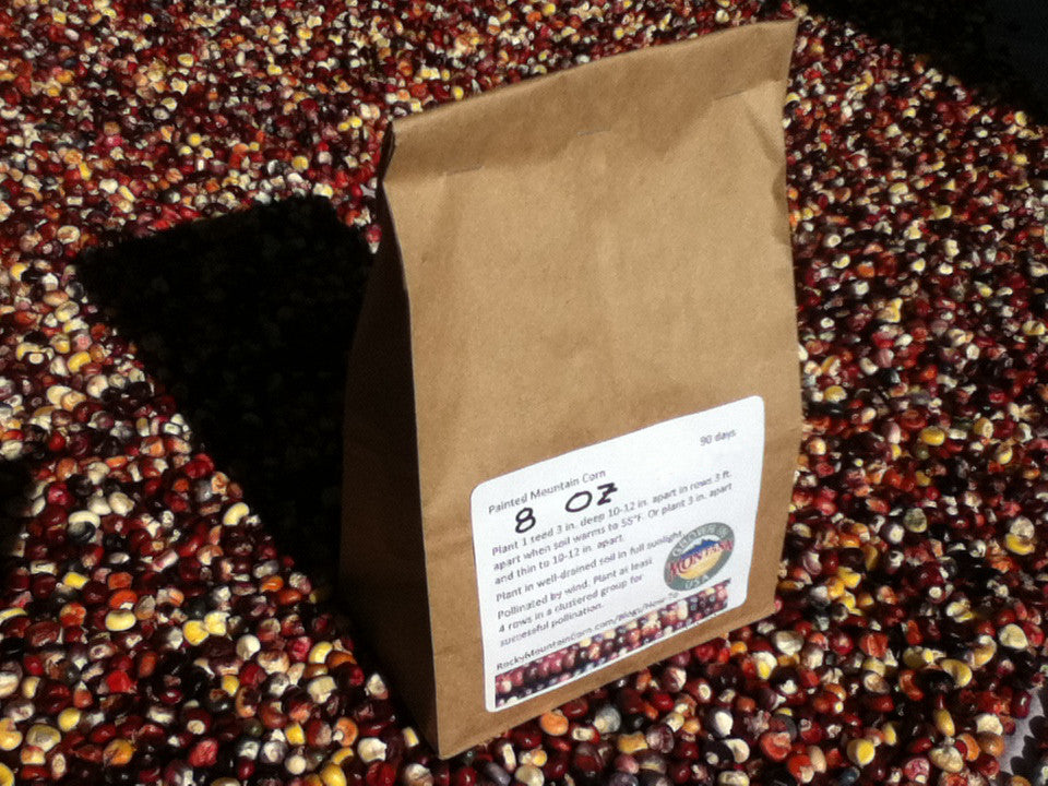 Buy 0.5 lb Painted Mountain Corn seed from the Rocky Mountain Corn family - premium hand-cultivated seed - non GMO, heirloom, open pollinated, organic, GMO-free