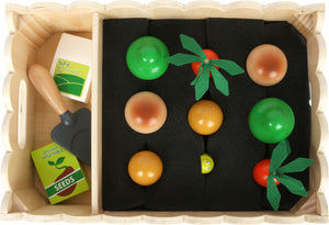 Wooden Vegetable Growing Play Set