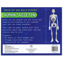 Load image into Gallery viewer, Press Out And Build – Human Skeleton