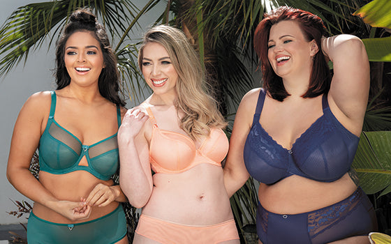 What are the Features of a Plus Size Bra?