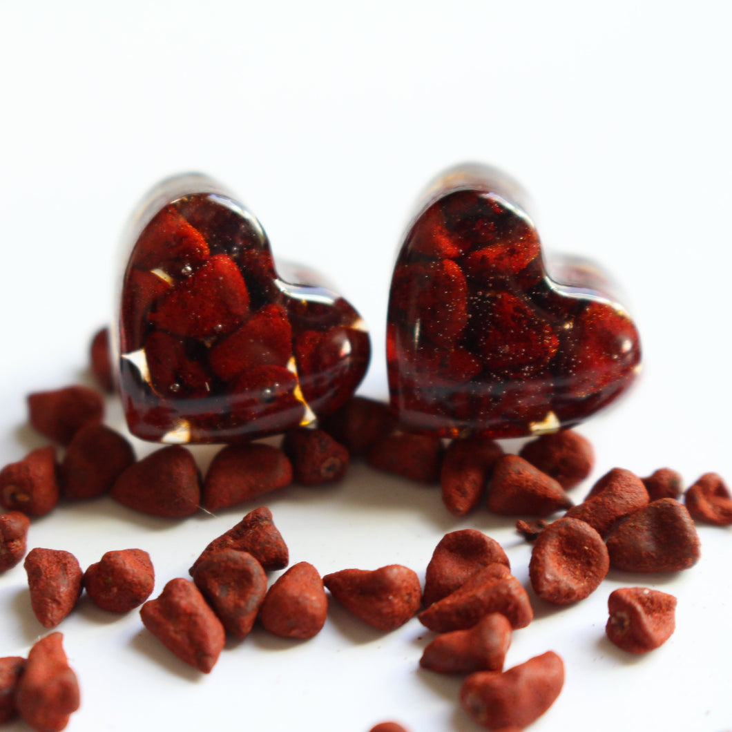 Small Heart Shape Stud Earrings - Annatto Seed - Dark Red