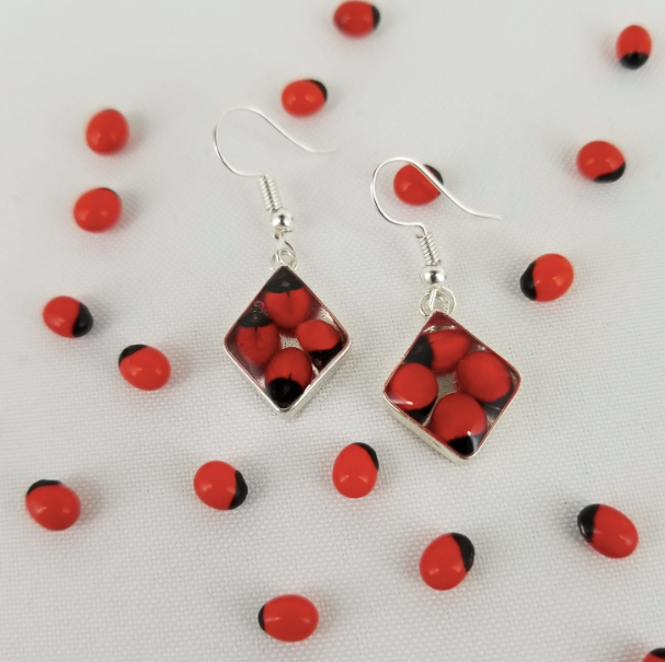 Huayruro Bean - Rombo Metal Earrings - Red & Black