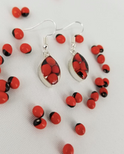 Load image into Gallery viewer, Huayruro Bean - Oval Metal Earring - Red & Black