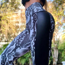 Load image into Gallery viewer, Black Viper Leggings | Daniki Limited
