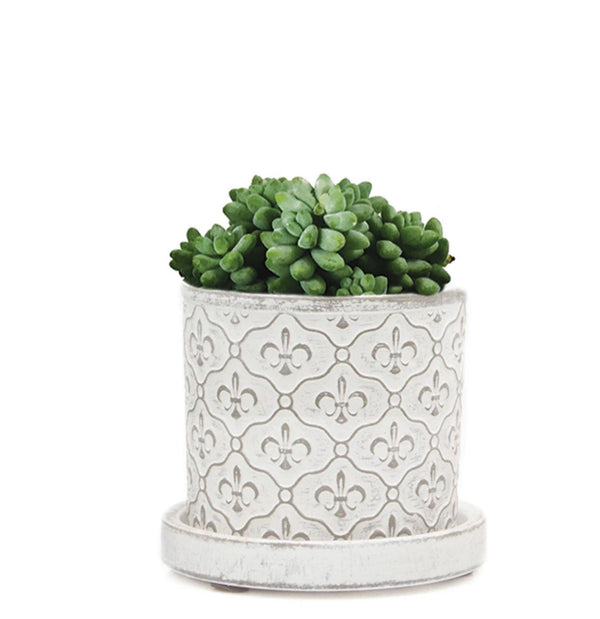 Pot with Drainage - White Fleur de Lis Pots Chive