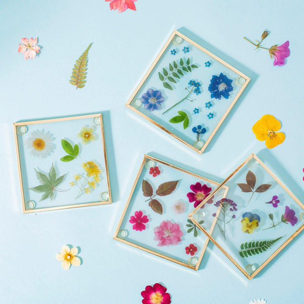 Pressed Flowers Glass Coasters Coasters Sass & Belle