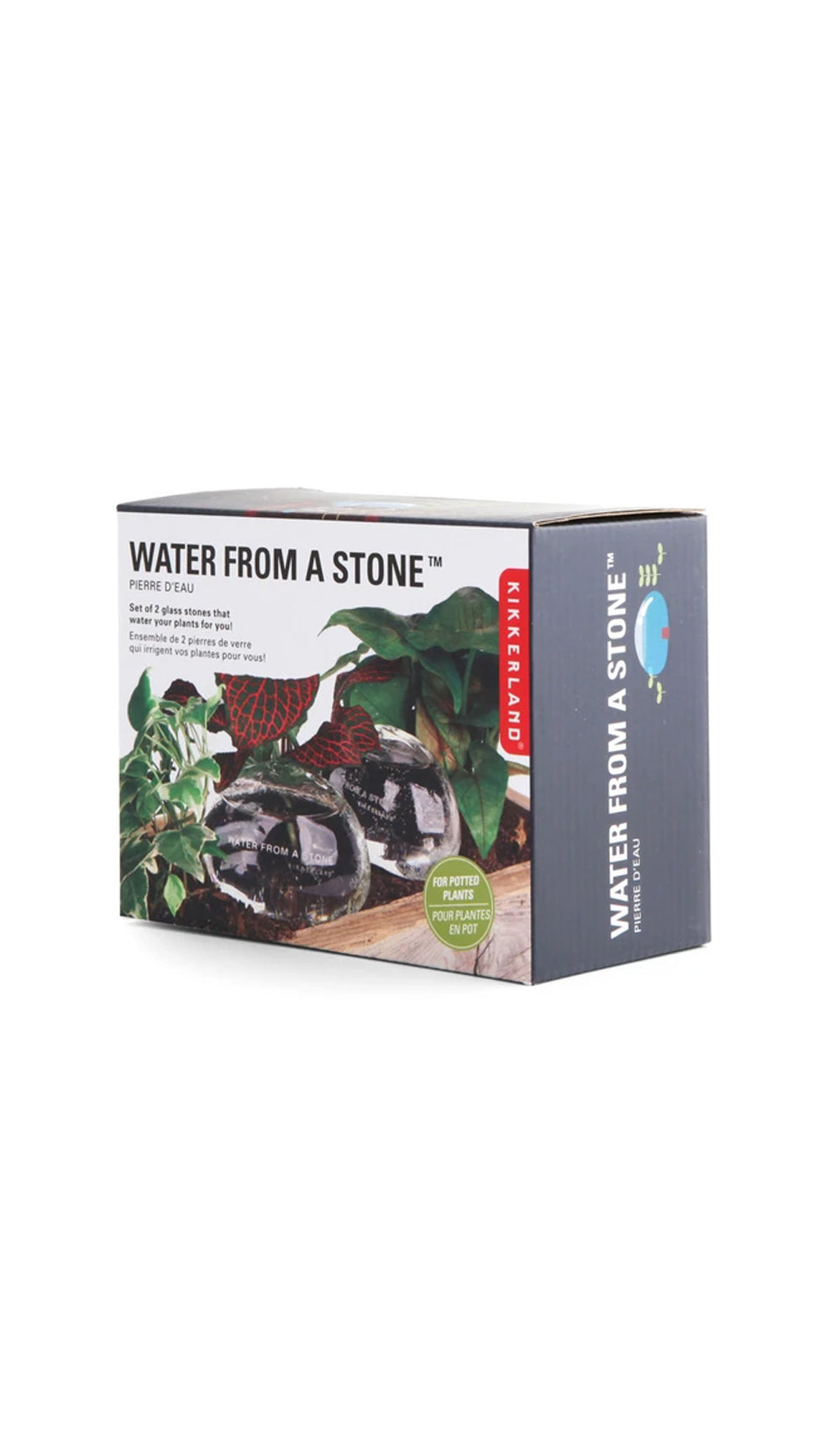 Water Rocks 2Pc